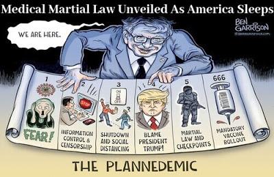 The Plandemic...