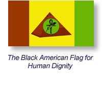 Indigenous American Flag For Human Dignity